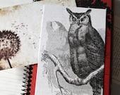 Sale - Postcard set, Miss Jemima - Set of 8  vintage inspired postcards