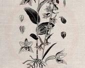 Clip Art Design Transfer Digital File Vintage Download DIY Scrapbook Shabby Chic Pillow Burlap Flower Garden Botanical Sheet Art No. 0479