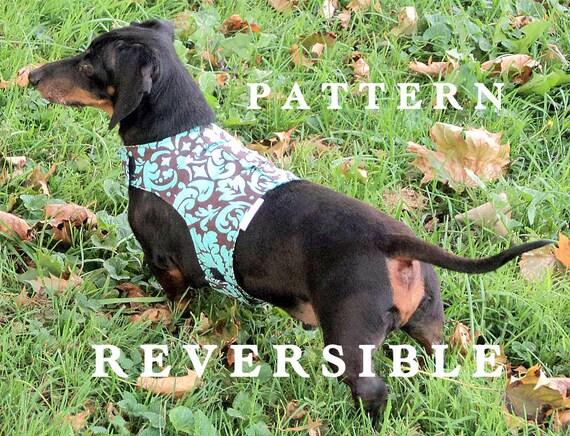 Rottweiler Pit Bulls Dog Harness Leash Instructions Dachshunds