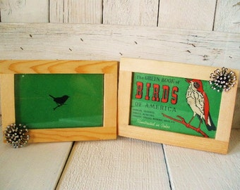 Set two vintage bird book covers framed nature guide green wall hanging