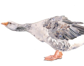 Gander Painting - Goose- Print of watercolor painting 5 by 7 print wall art print - bird art print
