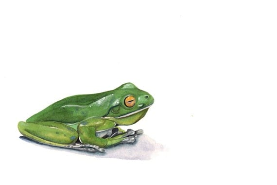 Frog painting - F070- print of watercolor painting A4 print