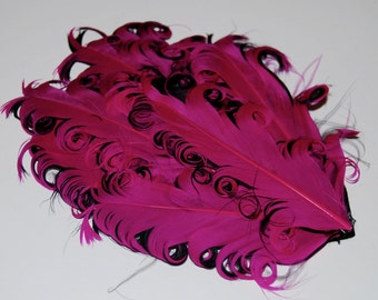 Curly Feather Pad - Two Tone Raspberry Dark Pink  on Black   FP131- (1 piece)