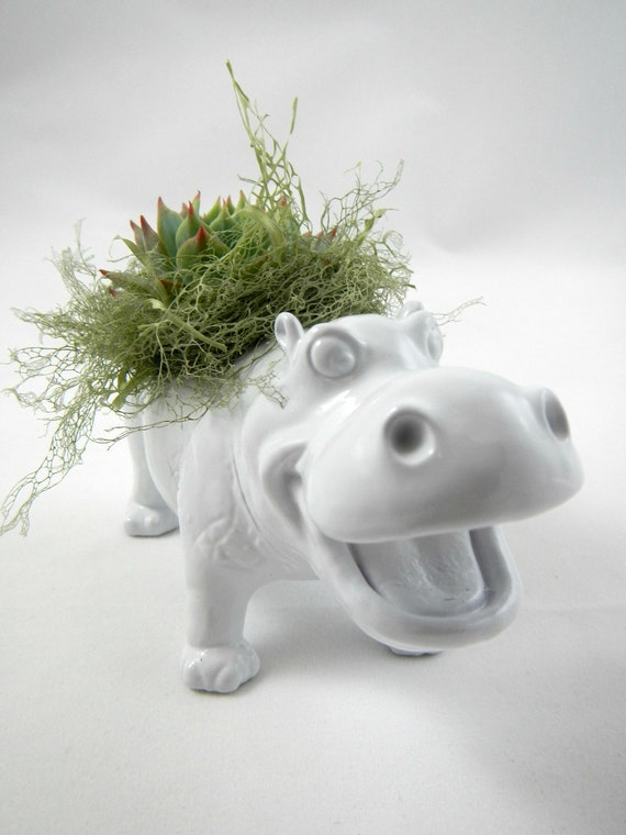 White Hippo Planter - Mini Modern Art Centerpiece