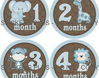 Monthly Baby Boy Milestone Stickers Baby Month Stickers Jungle Animal Blue Brown Shower Gift Baby PRECUT Bodysuit Stickers Nursery Decor