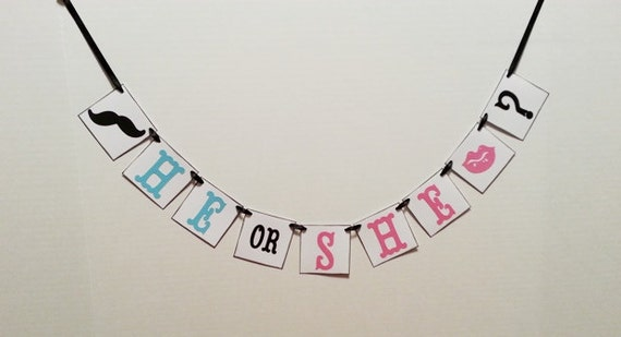 He or She banner/ gender reveal garland/ boy or girl/ baby banner/ baby shower/ photo prop