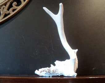 Bright White Modern Painted Antler Display Jewelry Holder