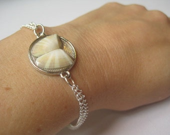 Coquina Clam Seashell Butterfly Bracelet