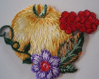 Iron-on Applique Embroidered Thermo -Adhesive Apple Patch