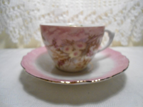 Vintage China Teacup and Saucer Pale Pink Flowers