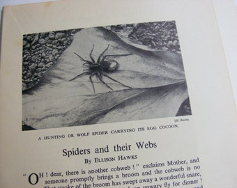 Vintage Spider Collage Kit