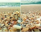 "Beach Poster Print Set of 2 | Large Wall Art | Seashells, Turquoise Ocean Waves | Set of 2 Prints 12""x12"" Each | Beach House Decor Wall Art"