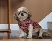 Crimson and White Dog Sweater
