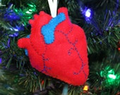 Anatomical Heart Ornament
