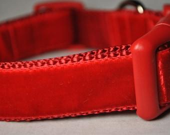 """Red Velvet 1"""" Wide Adjustable Dog Collar"""