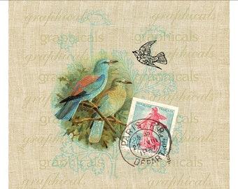 Blue pink birds flowers Paris instant digital download clip art ephemera for iron on fabric transfer decoupage paper burlap pillows No. 516