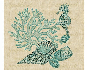 Coral Seahorse shells instant clip art Digital download graphic image for iron on fabric transfer burlap decoupage pillows tote paper  1701