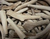 3 natural antler dog chew treats pet food bone deer toy