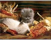 4 Cat Kitten Autumn Halloween Holiday Thanksgiving Christmas Cats Kittens Greeting Notecards/ Envelopes Set