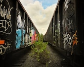A tree grows on the tracks between freight trains in Queens NY