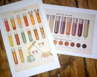 urinalysis & urine test set of 2 glorious science medical prints