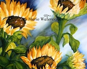 "Sonoma sunflowers -  floral summer watercolor, 10"" x 10"" giclee print"