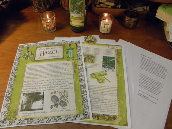 Celtic Tree Calendar Series: Hazel Month August 5-September 1