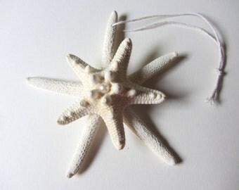 Beach Christmas Ornament - Beach Decor Double Starfish Christmas Ornament REAL Starfish -  - Nautical Ornament