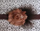Newborn Baby / Girls Headband Fabric Flower Feather / Photo Prop / Mocha Sweetie