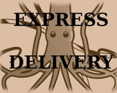 EXPRESS Delivery Option - Domestic or International