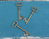 Small Antique Style Skelton Key - 5 count