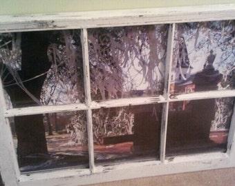 Toomer's Corner Window  Auburn University