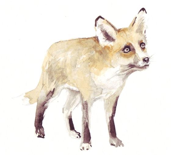 Fox print, illustration in watercolor, watercolour illustration, animal illustration, orange fox, wildlife illustration, fox