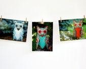 Owl Postcard Set - Woodland Cards- Embroidered Owls- Owl Stationery