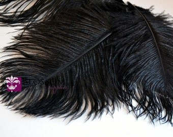 Set of 3 Black 8 - 9 Inches Ostrich Feathers - Plumes - Wedding Party Decorations - Headband Feathers - Bouquet Feather