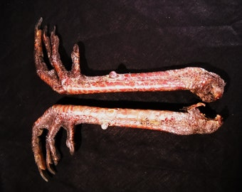"6-9"" Giant Turkey Bird Legs Set of 2 Taxidermy, talons, claws, and feet or foot"