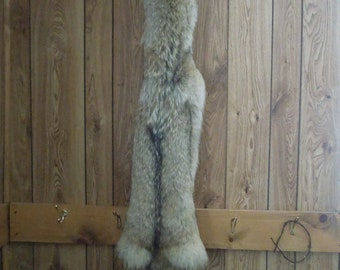 Fully tanned Northern MN Coyote pelt - hide