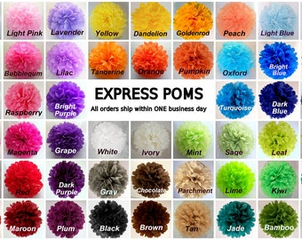 Tissue Paper Pom Poms - 7 Small Poms - Ships within ONE Business Day - Tissue Poms - PomPom - Tissue Pom Poms - Choose Your Colors!