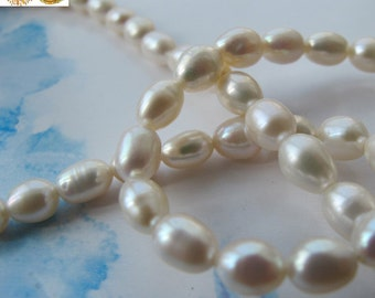14 inch strand of Freshwater Pearl smooth oval beads,rice beads 5-6 mm