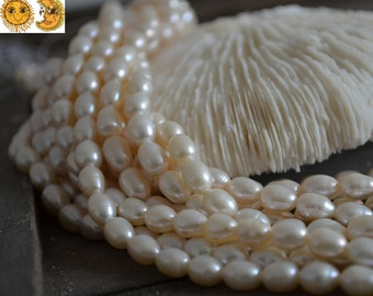 14 inch strand of Freshwater Pearl smooth oval beads,rice beads 8-9 mm