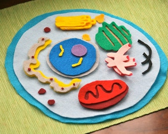 Animal Cell Model Felt Set - Science Toy -  Homeschool Biology - Educational Flannel Board