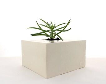 White Cube Planter