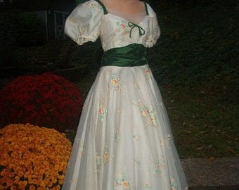 Scarlett O'Hara Costume Gone With The Wind Picnic Dress/ Gown Small