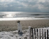 Snowman Photo  ,   Snow landscape   ,   winter photo  ,  winter art  ,   beach landscape  ,   ocean landscape  ,   winter landscape