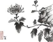 "Print ""Chrysanthemum"" "" - Sumi-e Japanese art Brush painting 8.5x11"" - Reproduction Art - wall decor"