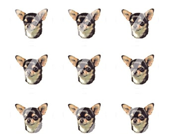 Shorthaired Chihuahua digital images for Bottle Caps