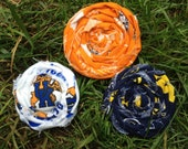 College Rosettes-Michigan,Tennessee, and Kentucky