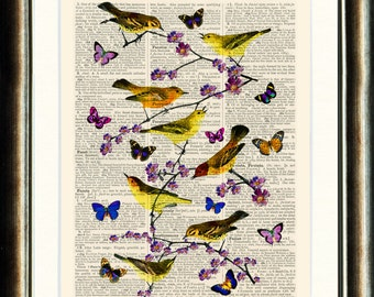 Birds and Butterflies - vintage image print  on a page from an late1800s Dictionary Buy 3 get 1 FREE