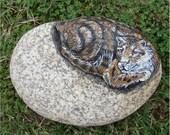 Clouded Leopard on rock, hand-painted rock, garden