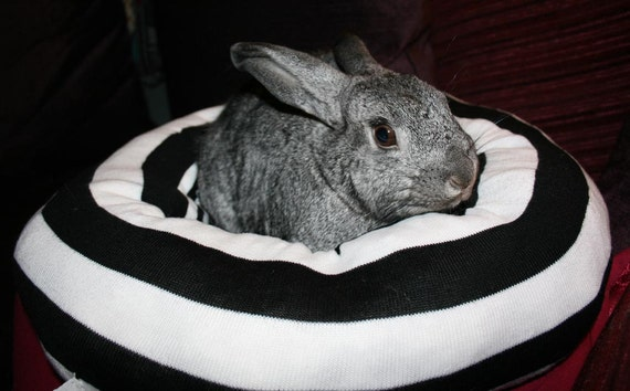 Ugli Donut bunny bed for medium sized bunny black and white acrylic bold retro stripe